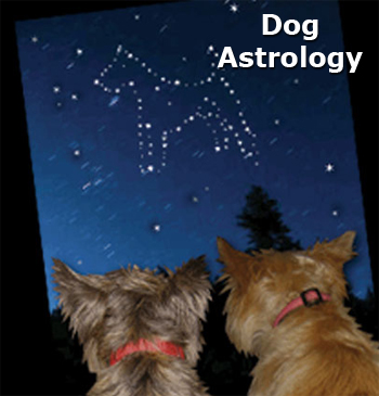 Dog Astrology 