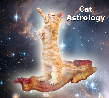 Cat Astrology 
